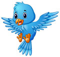 Cute blue bird cartoon flying Royalty Free Stock Photo