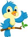 Cute blue bird cartoon Royalty Free Stock Photo