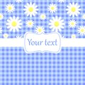 Cute blue card invitation with chamomile Royalty Free Stock Image