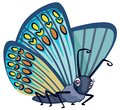 Cute Blue Monarch Butterfly with Spots and Big Eyes Cartoon Style Character Vector Illustration Isolated on White Royalty Free Stock Photo