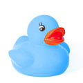 Cute blue rubber duck Royalty Free Stock Photo