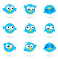 Cute blue vector Twitter Birds icons collection. Stock Photos