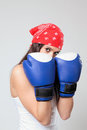 Cute boxer Stock Photos