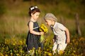 Cute boy and girl on summer field Royalty Free Stock Image
