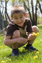 Cute Boy Picking Flowers Stock Images
