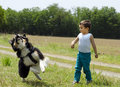 Cute boy playing fetch with his dog little friend outdoor Royalty Free Stock Photos