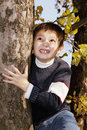 Cute boy on tree looking up Stock Photos