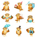 Cute Brown Owl Everyday Activities Icon Set Royalty Free Stock Photo