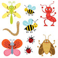 Cute bugs Stock Images