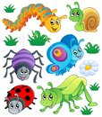 Cute bugs collection 1 Royalty Free Stock Photo