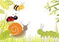 Cute bugs creating border including snail ladybird caterpillar bee Royalty Free Stock Image