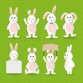 Cute bunny animal furry cartoon pattern