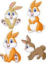 Cute bunny collection set isolated on white background