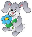 Cute bunny holding flower Stock Images