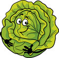 Cute cabbage vegetable cartoon illustration of funny comic green or lettuce food character Royalty Free Stock Photos