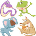 Cute cartoon animal set Royalty Free Stock Photos