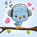 Cute Bird with headphones on a branch