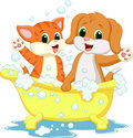 Cute cartoon cat and dog bathing time illustration of Stock Images