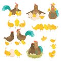 Cute cartoon cock family set isolated on white background