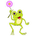 Cute cartoon frog isolated illustration Stock Photo