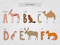 Cute cartoon funny zoo alphabet in vector a b c d e f letters antelope beaver camel duck elk fox design colorful style Royalty Free Stock Photos
