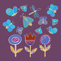 Cute cartoon insect set. Dragonflies, butterflies and flowers. . Vector illustration. Royalty Free Stock Photo