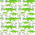Cute cartoon little crocodile in reed isolated on white background, Vector doodle Illustration alligator, wild animal Royalty Free Stock Photo