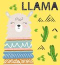 Cute cartoon llama alpaca vector graphic design set. Hand drawn llama character illustration