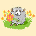Cute cartoon sheep vector illustration Royalty Free Stock Photos