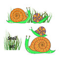 Cute cartoon snails set. Royalty Free Stock Photo