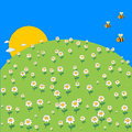Cute cartoon spring meadow with daisy flowers and flying bee. Royalty Free Stock Photo