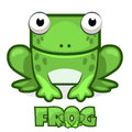 Cute cartoon square green frog