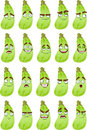 Cute cartoon squash smile with many expressions Stock Image