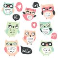 Cute cartoon vector owls collection