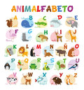 Cute cartoon zoo illustrated alphabet with funny animals. Spanish alphabet.