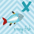 Cute cartoon zoo illustrated alphabet with funny animals- X for X-Ray Fish.