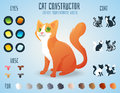 Cute cat breed constructor. You can create your