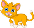 Cute cat cartoon expression illustration of Stock Image