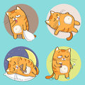 Cute cat character set of cartoon in various poses Royalty Free Stock Photo