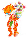 Cute cat with a flowers. Royalty Free Stock Image