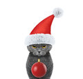 Cute cat in a hat of Santa Claus with xmas balls background