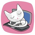 Cute Cat On Laptop Stock Photos