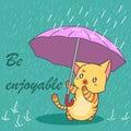 Cute cat in Monsoon season.