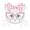 Cute cat portrait with pin up bow tie on head, sunglasses. Hand Royalty Free Stock Photo