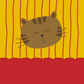 Cute cat on yellow and red background Stock Images