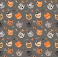 Seamless pattern with cute cats Royalty Free Stock Photo