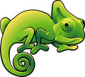 Cute Chameleon Vector Illustra Stock Photo