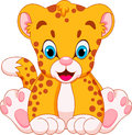 Cute cheetah babies baby cheetahs are and adorable sitting Royalty Free Stock Photos