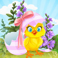 Cute chick hatched from an easter egg on a green l baby lawn with flowers Stock Photo
