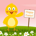 Cute Chick Wishing a Happy Easter Royalty Free Stock Photo